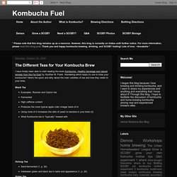 Kombucha Fuel: The Different Teas for Your Kombucha Brew