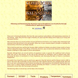Kombucha, The Balancing Act