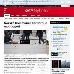 Norska kommuner har förbud mot tiggeri