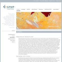 GFMP Management Consultants - komunikacja wewnętrzna firmy, badania opinii i ocena pracowników, plany sukcesji, audyt komunikacyjny, performance management