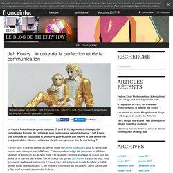 Jeff Koons : Le Culte De La Perfection Et De La Communication