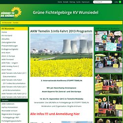 Grüner Kreisverband Wunsiedel:Temelin