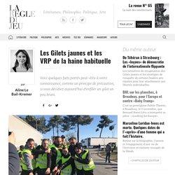 Aline Le Bail-Kremer, Les Gilets jaunes et les VRP de la haine habituelle