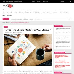 How to Find a Niche Market for Your Startup?