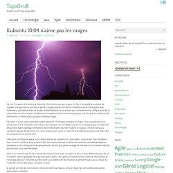 Kubuntu 10.04 n'aime pas les orages