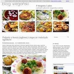 Wegański blog kulinarny z przepisami kuchni wegańskiej 4 wegany i pies » Pulpety z kaszy jaglanej i zupa ze świeżych ogórków
