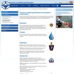 Kunskapsnivåer för simmärken - Svenska Livräddningssällskapet