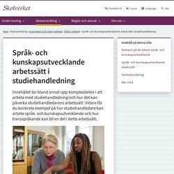 Språk- och kunskapsutvecklande arbetssätt i studiehandledning