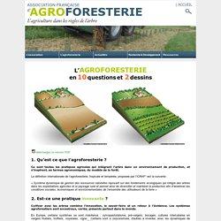 L'Agroforesterie en 10 questions