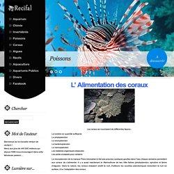 L' alimentation des coraux