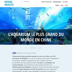 L'Aquarium le plus grand du monde en Chine