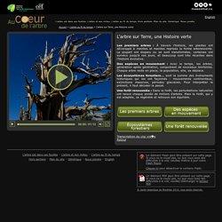 L'arbre sur Terre, une Histoire verte