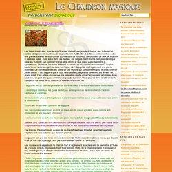 » L'Argousier : 2/ Ses propriétés