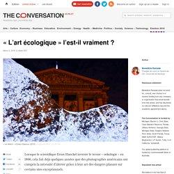 « L'art écologique » l'est-il vraiment ?
