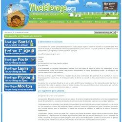 L'élevage des canards - www.vivelelevage.com