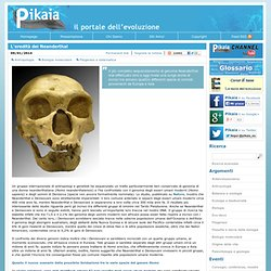 L'eredità dei Neanderthal