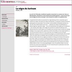 Voltaire, Candide : Le nègre de Surinam