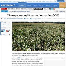 L'Europe assouplit ses règles sur les OGM