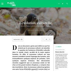 L'évolution culturelle