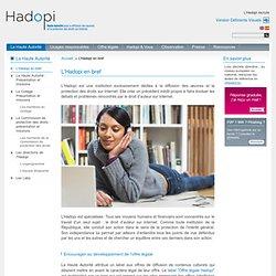 L'Hadopi : diffusion des oeuvres et protection des droits sur internet