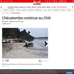 L'hécatombe continue au Chili