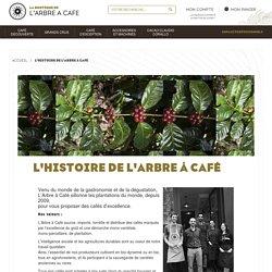 L'histoire de L'Arbre à Café - L'Arbre à Café