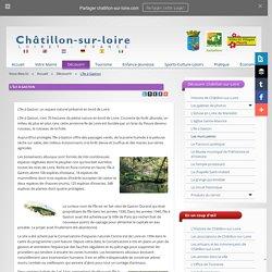 L'île à Gaston de Châtillon-sur-Loire