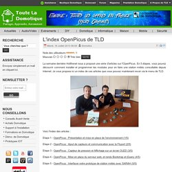 L'index OpenPicus de TLD