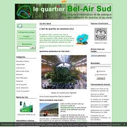 """""""L'oeil du quartier"""" : Le Quartier Bel-Air Sud"""