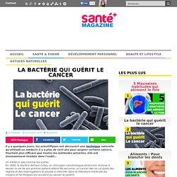 La bactérie qui guérit le cancer
