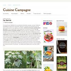 La berce - Cuisine Campagne