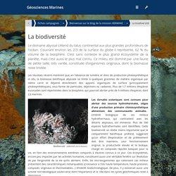 biodiversité et dorsales