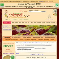 La Boutique » Tomates — Kokopelli