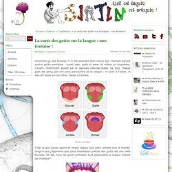 La carte des goûts sur la langue : une foutaise !