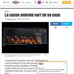 La cause animale sort de sa cage