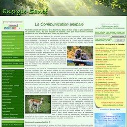 La communication animale 1/2