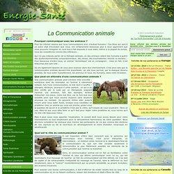 La communication animale 2/2