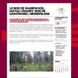 Un rucher et une plateforme pédagogiques et coopératifs dans le bois de montrosiès situé au coeur de Nègrepelisse.
