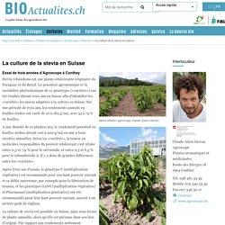 BIOACTUALITES_CH 07/07/17 La culture de la stevia en Suisse