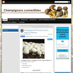La culture du champignon de paris