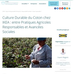 La culture durable du coton chez IKEA