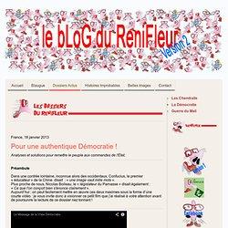La Démocratie - Site de lerenifleur !