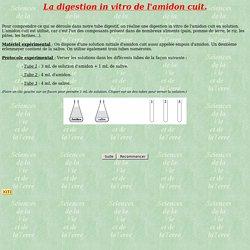 La digestion in vitro de l'amidon cuit.