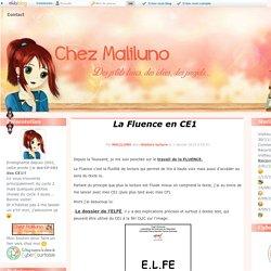 La Fluence en CE1