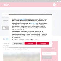 FRANCE INTER 21/11/19 LA TERRE AU CARRE - La forêt française se meurt