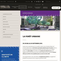 La Forêt urbaine – Musée McCord