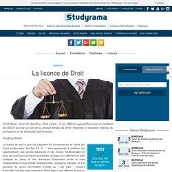 La licence de Droit