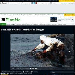 """Dix ans après, la marée noire du """"Prestige"""" est jugée en Espagne"""