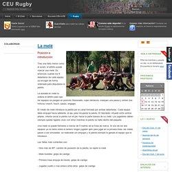 La melé - CEU Rugby