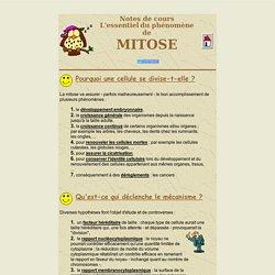 La mitose - Division cellulaire